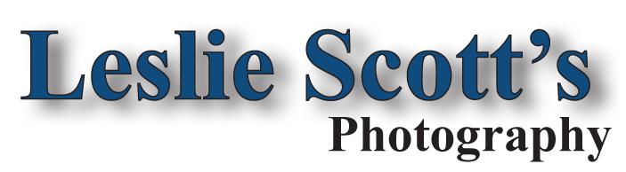 leslie-scott-logo
